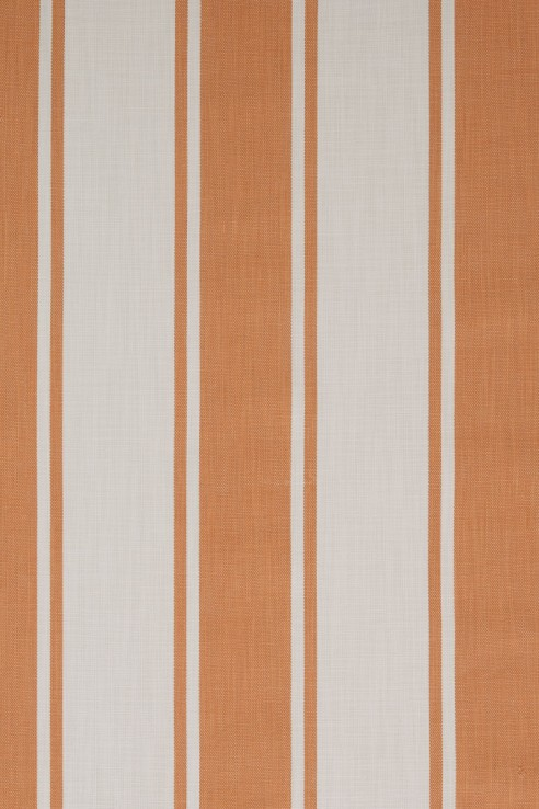 broad-stripe-in-orange