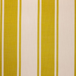 Broad Stripe in Chartreuse