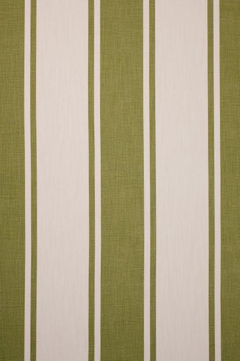 Broad Stripe in Olive 1