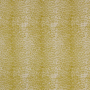 Leopard in Chartreuse