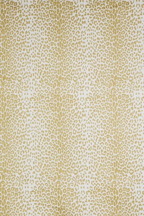 Leopard in Gold on White 1