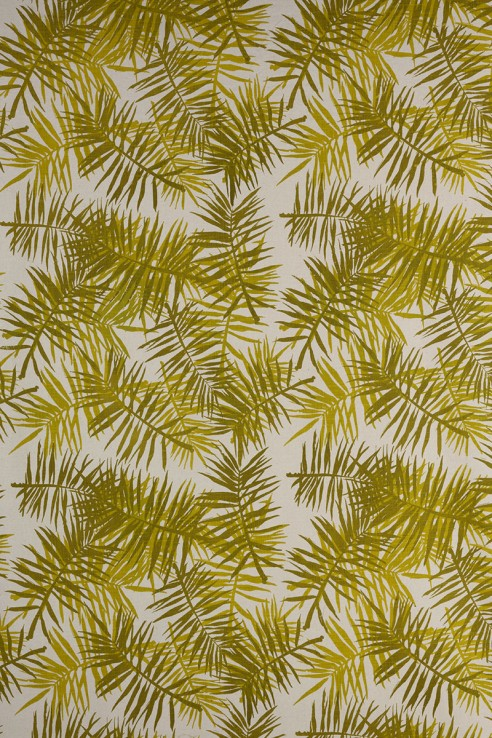 Palmfrond in Chartreuse 1