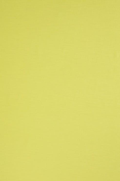 Plain in Plain Lime Cotton 1