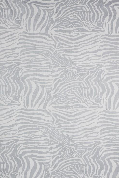 Zebra in Silver on White 1