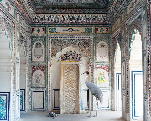 Karen_Knorr_Amritas_Message_India_Song0