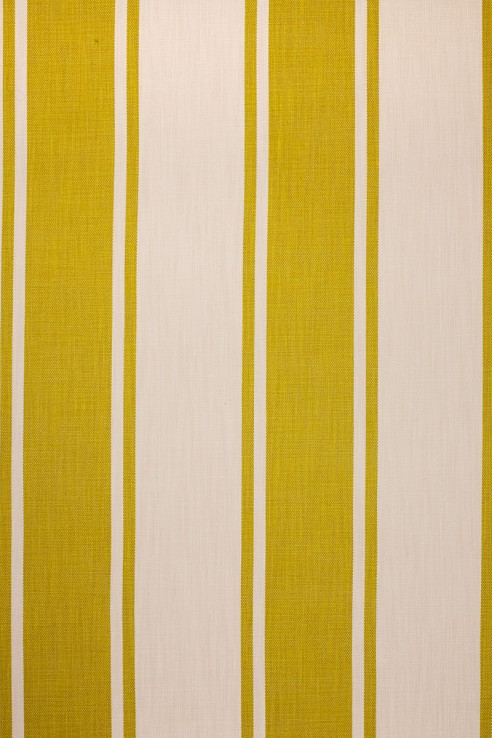 Broad Stripe in Chartreuse 1