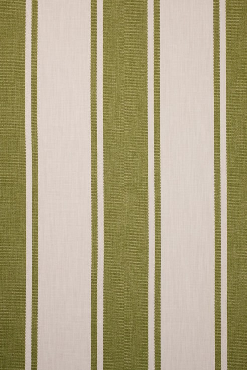 Broad Stripe in Olive 1