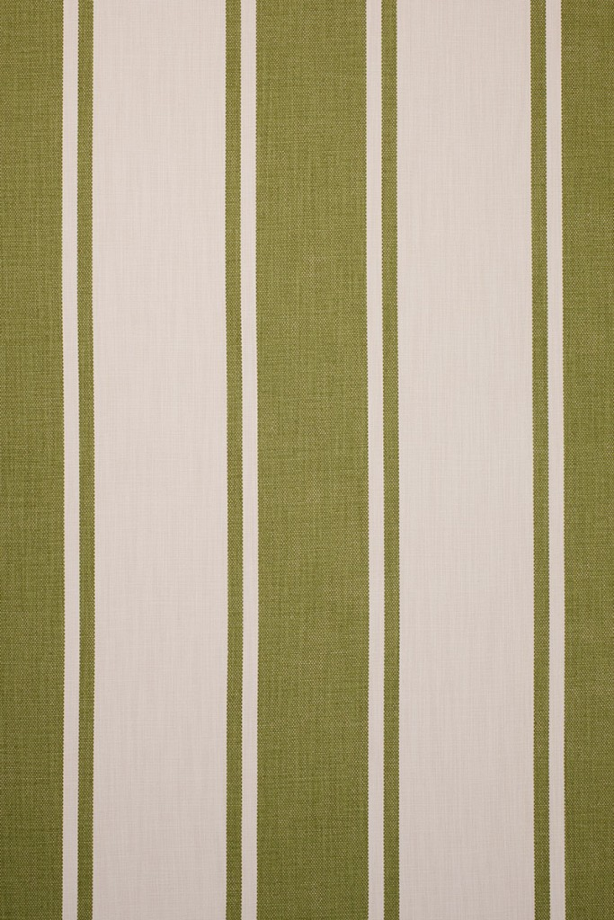 Broad Stripe in Olive