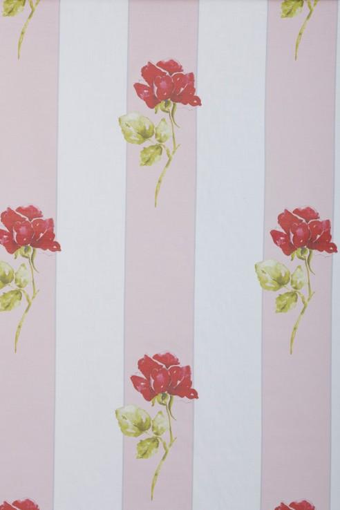 Grace Kelly Stripe in Pink 1