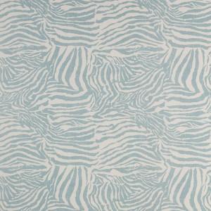 Zebra in Aqua