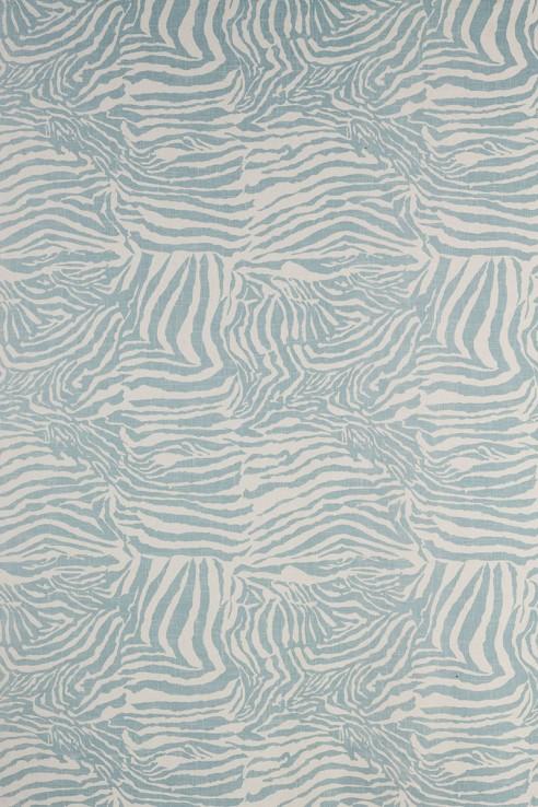 Zebra in Aqua 1