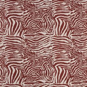 Zebra in Burnt Red