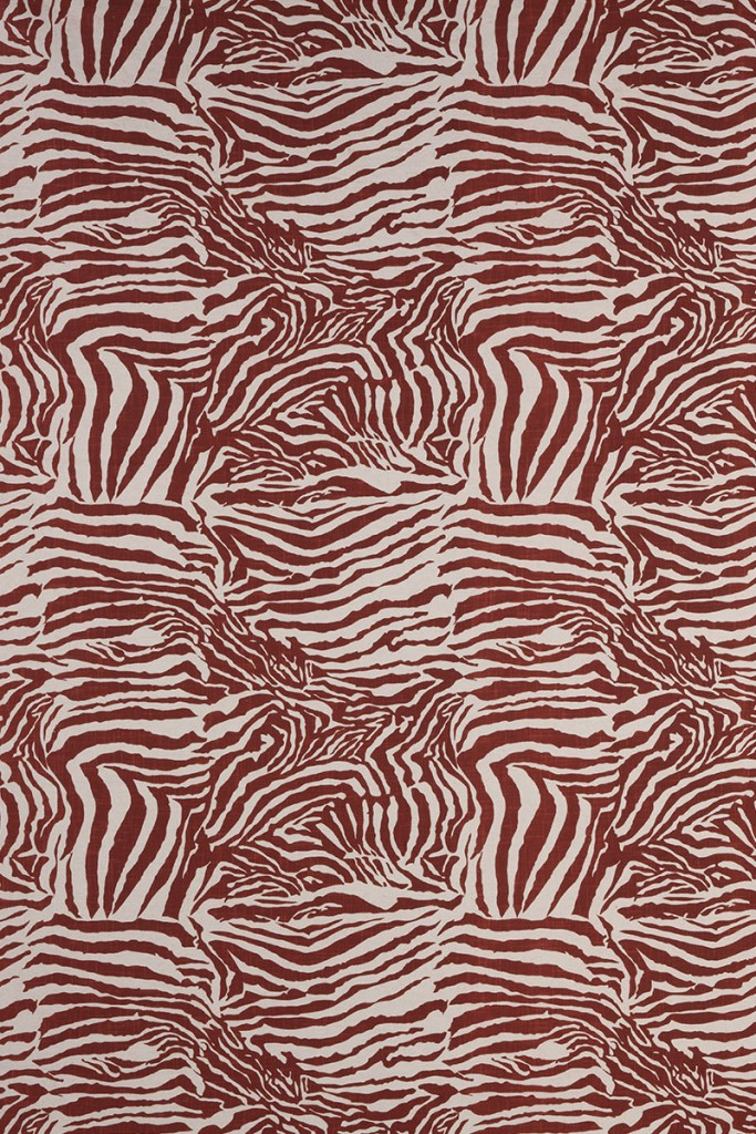 Zebra in Burnt Red