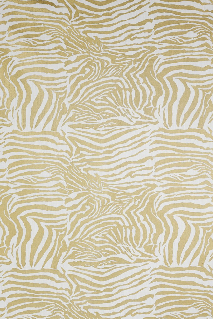 Zebra in Gold on White