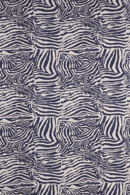 Zebra in Indigo 1