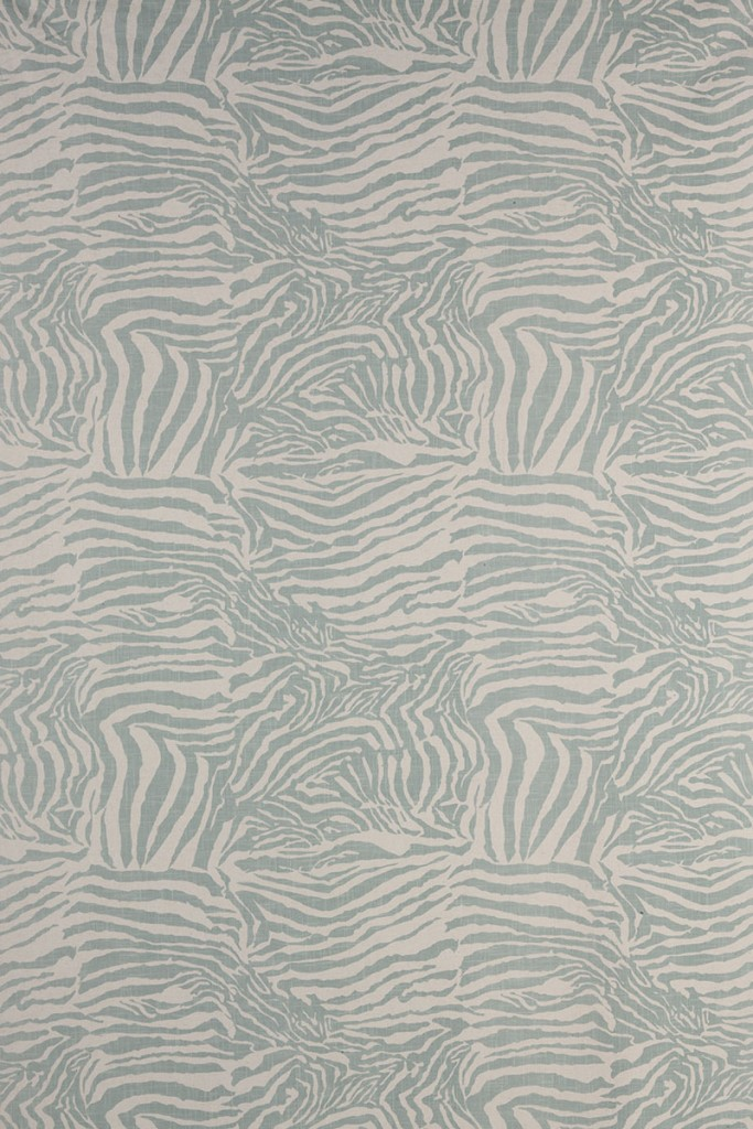 Zebra in Seafoam