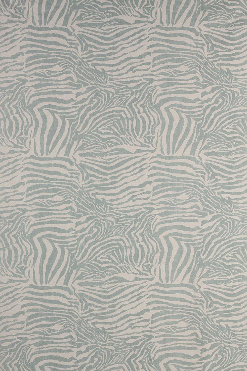 Zebra in Seafoam
