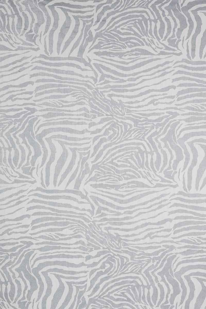 Zebra in Silver on White